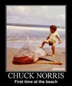 chuck-norris-first-time-beach